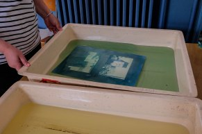 Exemple d'atelier Cyanotype
